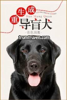 Trùng Sinh Thành Chó Dẫn Người Mù